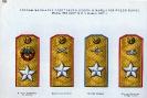 Umundurowanie i insygnia Armii ZSRR 1918-1958 :: 1918-1958